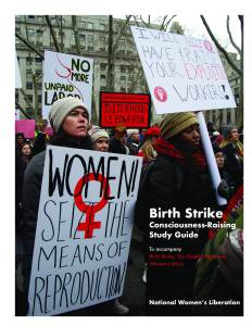 Birth Strike Study Guide Cover